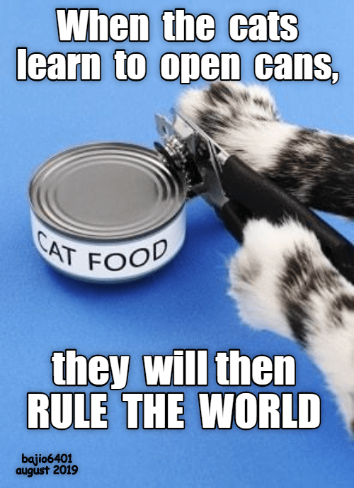Cats, World, and Cat: When the cats  learn to open cans,  CAT FOO  they will then  RULE THE WORLD  bajio6401  august 2019