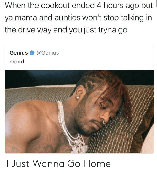 wanna go home: When the cookout ended 4 hours ago but  ya mama and aunties won't stop talking in  the drive way and you just tryna go  Genius@Genius  mood I Just Wanna Go Home