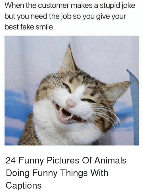 Funny Pictures Of: When the customer makes a stupid joke  but you need the job so you give your  best fake smile 24 Funny Pictures Of Animals Doing Funny Things With Captions
