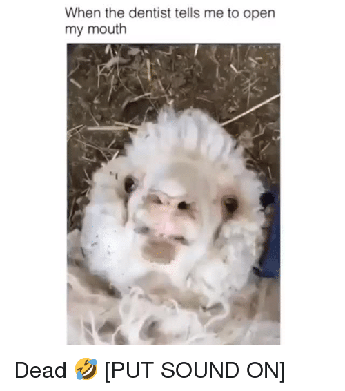 Sound, Open, and Dentist: When the dentist tells me to open  my mouth Dead 🤣[PUT SOUND ON]