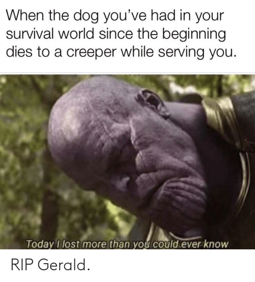 Lost, Today, and World: When the dog you've had in your  survival world since the beginning  dies to a creeper while serving you.  Today I lost more than you could ever know RIP Gerald.