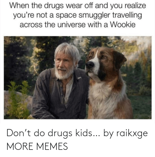 href: When the drugs wear off and you realize  you're not a space smuggler travelling  across the universe with a Wookie Don't do drugs kids… by raikxge MORE MEMES