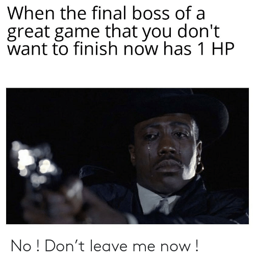 Final Boss, Game, and Boss: When the final boss of a  great game that you don't  want to finish now has 1 HP No ! Don't leave me now !