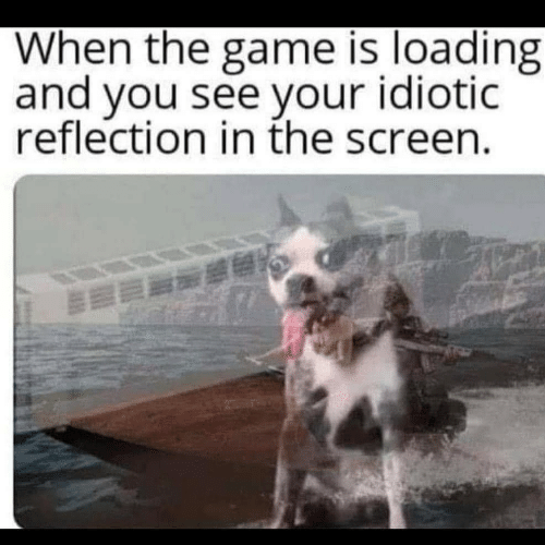 The Game, Game, and Reflection: When the game is loading  and you see your idiotic  reflection in the screen.