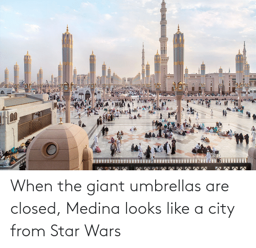 Giant: When the giant umbrellas are closed, Medina looks like a city from Star Wars