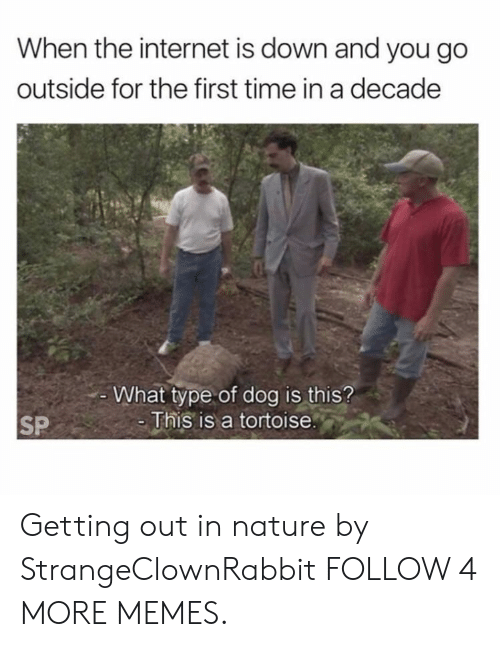 In Nature: When the internet is down and you go  outside for the first time in a decade  What type of dog is this?  -This is a tortoise.  SP Getting out in nature by StrangeClownRabbit FOLLOW 4 MORE MEMES.