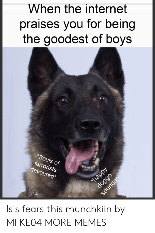 Souls: When the internet  praises you for being  the goodest of boys  *Souls of  terrorists  devoured*  happy  doggo  sounds Isis fears this munchkiin by MIIKE04 MORE MEMES