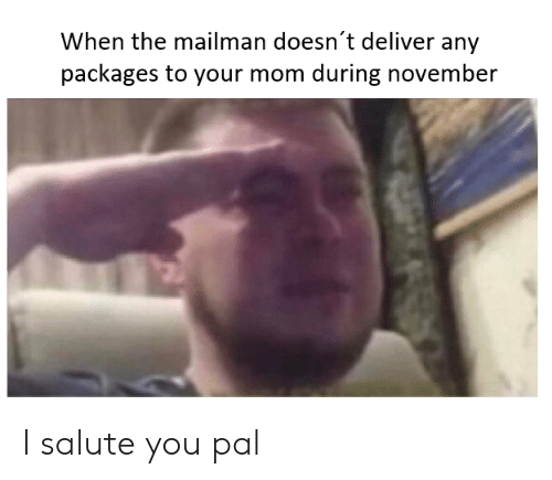 I Salute You: When the mailman doesn't deliver any  packages to your mom during november I salute you pal