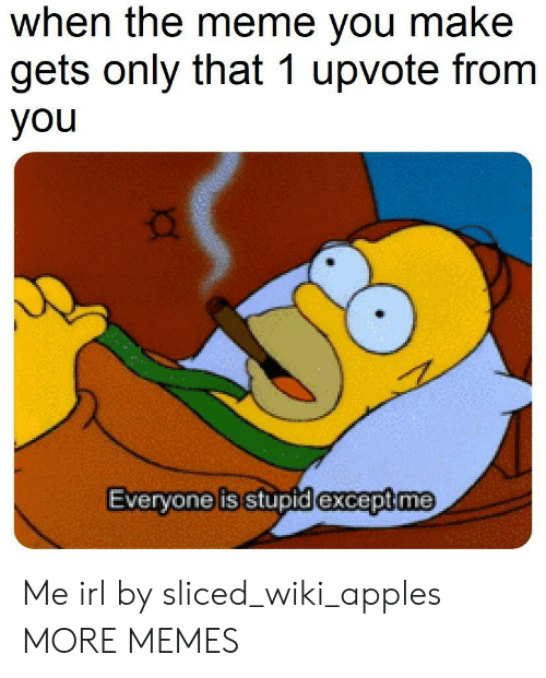 Dank, Meme, and Memes: when the meme you make  gets only that 1 upvote from  you  Evervone is stupid lexcept me Me irl by sliced_wiki_apples MORE MEMES