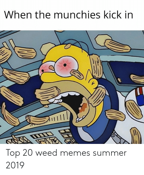 Weed Memes: When the munchies kick in Top 20 weed memes summer 2019