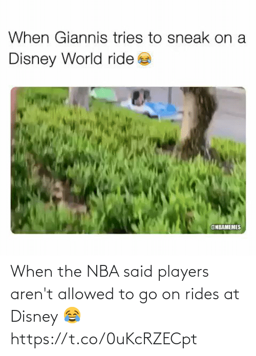 To Go: When the NBA said players aren't allowed to go on rides at Disney 😂 https://t.co/0uKcRZECpt