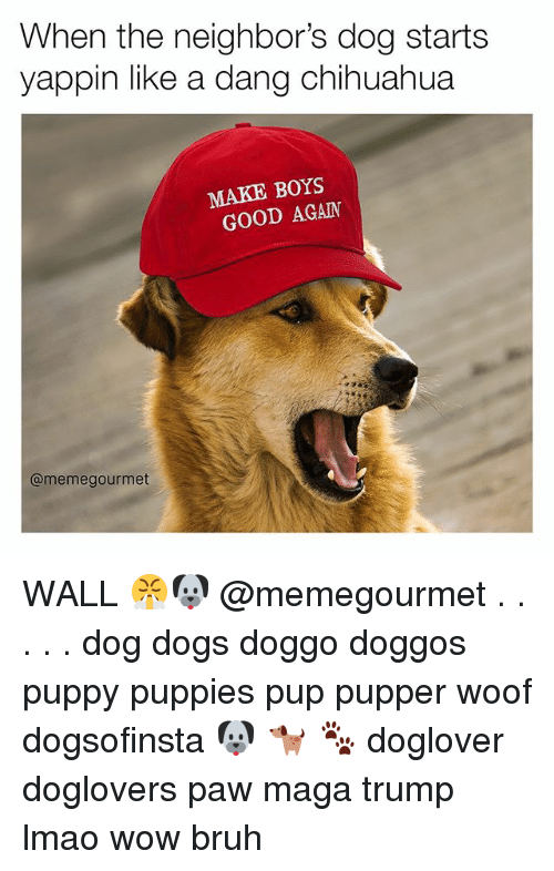 Woofe: When the neighbor's dog starts  yappin like a dang chihuahua  MAKE BOYS  GOOD AGAIN  @meme gourmet WALL 😤🐶 @memegourmet . . . . . dog dogs doggo doggos puppy puppies pup pupper woof dogsofinsta 🐶 🐕 🐾 doglover doglovers paw maga trump lmao wow bruh