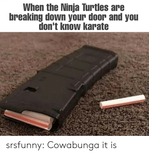 turtles: When the Ninja Turtles are  breaking down your door and you  don't know karate srsfunny:  Cowabunga it is