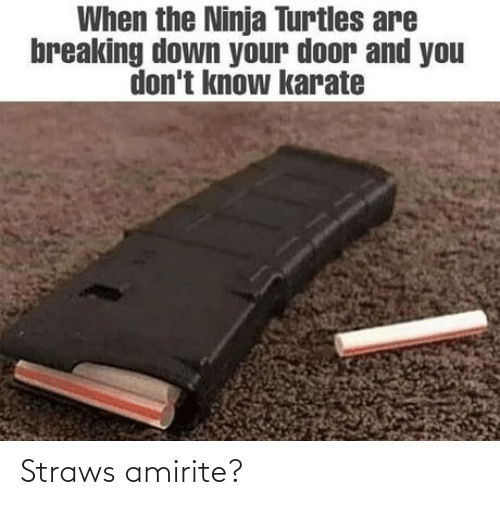 turtles: When the Ninja Turtles are  breaking down your door and you  don't know karate Straws amirite?