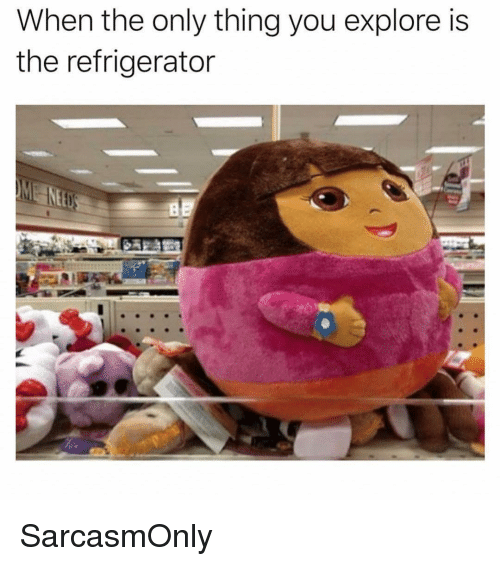 Refrigerator: When the only thing you explore is  the refrigerator SarcasmOnly