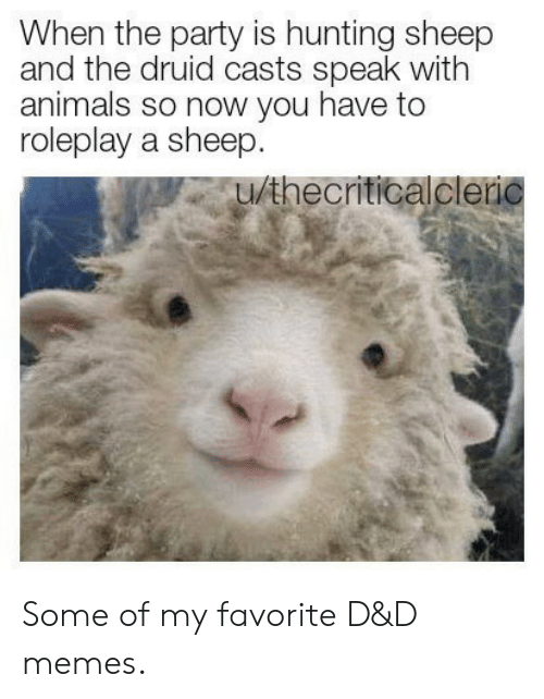 sheep: When the party is hunting sheep  and the druid casts speak with  animals so now you have to  roleplay a sheep.  u/thecriticalcleric Some of my favorite D&D memes.