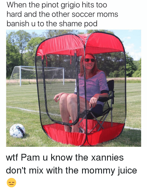 banishes: When the pinot grigio hits too  hard and the other soccer moms  banish u to the shame pod wtf Pam u know the xannies don't mix with the mommy juice 😑