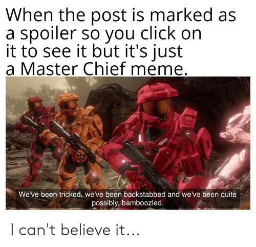 Click, Meme, and Quite: When the post is marked as  a spoiler so you click on  it to see it but it's just  a Master Chief meme.  We've been tricked, we've been backstabbed and we ve been quite  possibly, bamboozled. I can't believe it...