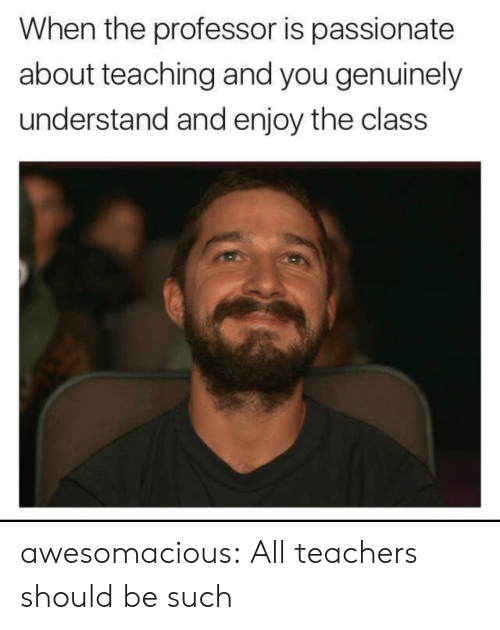 Tumblr, Blog, and Http: When the professor is passionate  about teaching and you genuinely  understand and enjoy the clas:s awesomacious:  All teachers should be such