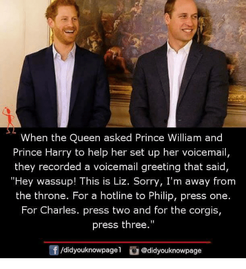 """Corgis: When the Queen asked Prince William and  Prince Harry to help her set up her voicemail,  they recorded a voicemail greeting that said  """"Hey wassup! This is Liz. Sorry, I'm away from  the throne. For a hotline to Philip, press one.  For Charles. press two and for the corgis,  press the""""  0  /didyouknowpagel @didyouknowpage"""