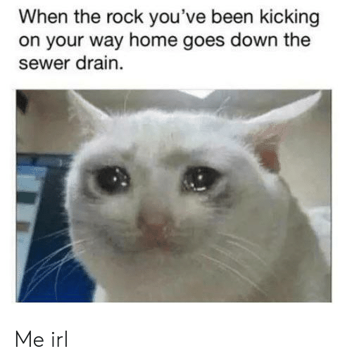 sewer: When the rock you've been kicking  on your way home goes down the  sewer drain Me irl