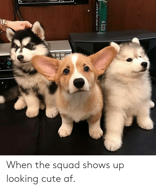 Cute AF: When the squad shows up looking cute af.