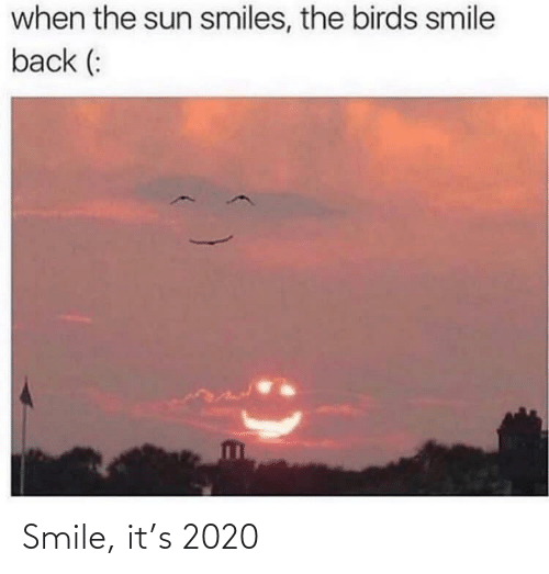 the sun: when the sun smiles, the birds smile  back (: Smile, it's 2020