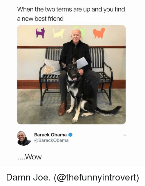 Best Friend, Ironic, and Obama: When the two terms are up and you find  a new best friend  Barack Obama  @BarackObama  ....Wow Damn Joe. (@thefunnyintrovert)