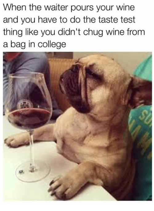 College, Memes, and Wine: When the waiter pours your wine  and you have to do the taste test  thing like you didn't chug wine from  a bag in college