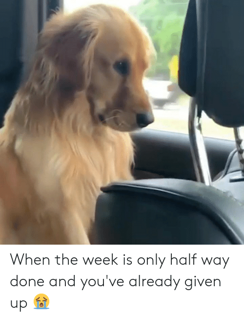 Done,  Way, and  Week: When the week is only half way done and you've already given up 😭