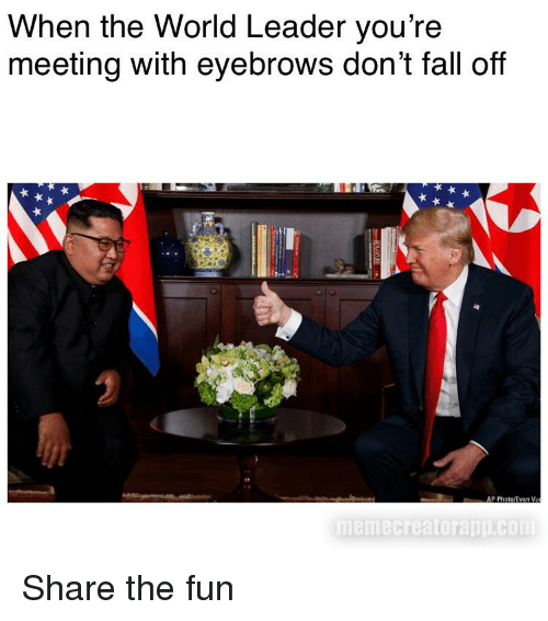 Fall, Reddit, and World: When the World Leader you're  meeting with eyebrows don't fall off