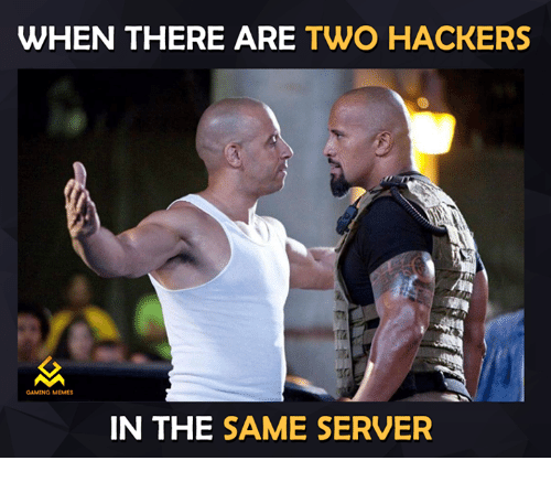 Game Meme: WHEN THERE ARE  TWO HACKERS  GAMING MEMES  IN THE  SAME SERVER