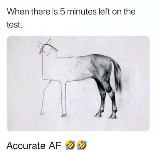 Af, Dank, and Test: When there is 5 minutes left on the  test. Accurate AF 🤣🤣