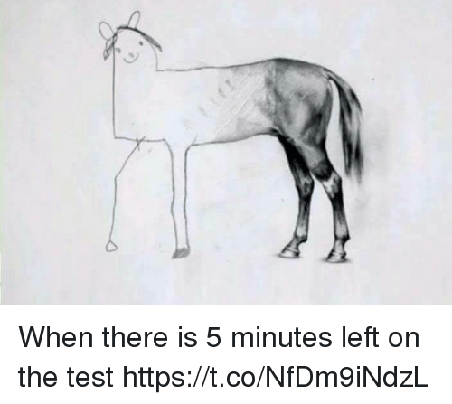 Memes, Test, and 🤖: When there is 5 minutes left on the test https://t.co/NfDm9iNdzL
