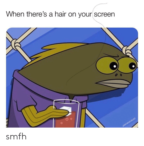 Hair, Smfh, and When: When there's a hair on your screen  SPONGECRUST smfh