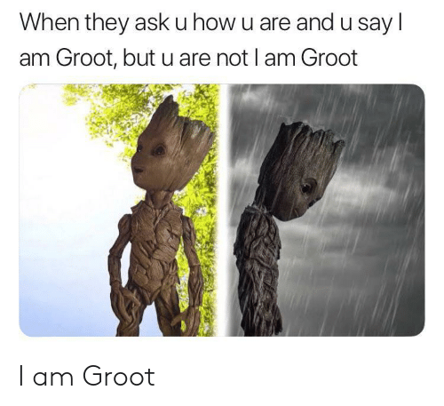 U Say: When they ask u how u are and u say l  am Groot, but u are not I am Groot I am Groot