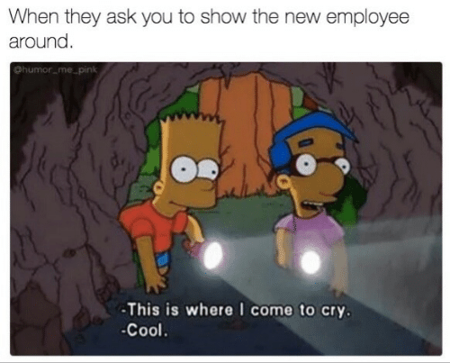 Cool, Ask, and Cry: When they ask you to show the new employee  around  ohumor mepin  -This is where I come to cry  -Cool