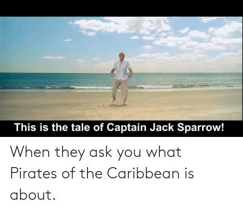 pirates of the caribbean: When they ask you what Pirates of the Caribbean is about.