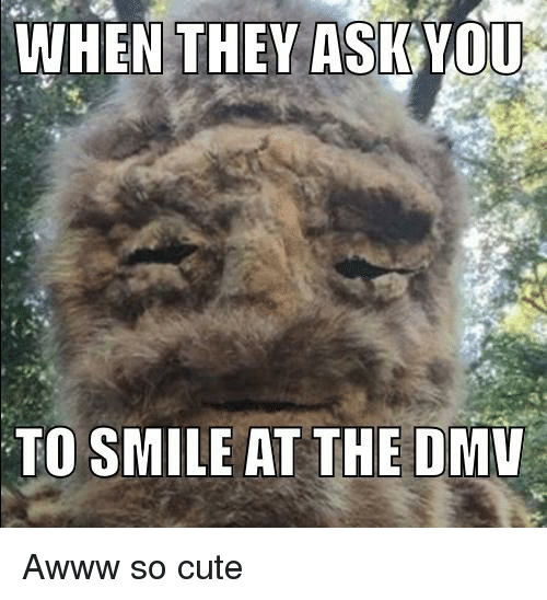 dmu: WHEN THEY ASKYOU  TO SMILE AT THE DMU