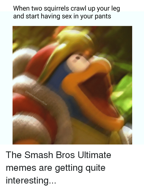 Ultimate Memes: When two squirrels crawl up your leg  and start having sex in your pants The Smash Bros Ultimate memes are getting quite interesting...