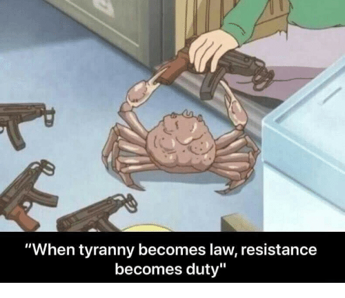 "Tyranny, Resistance, and Law: ""When tyranny becomes law, resistance  becomes duty"""