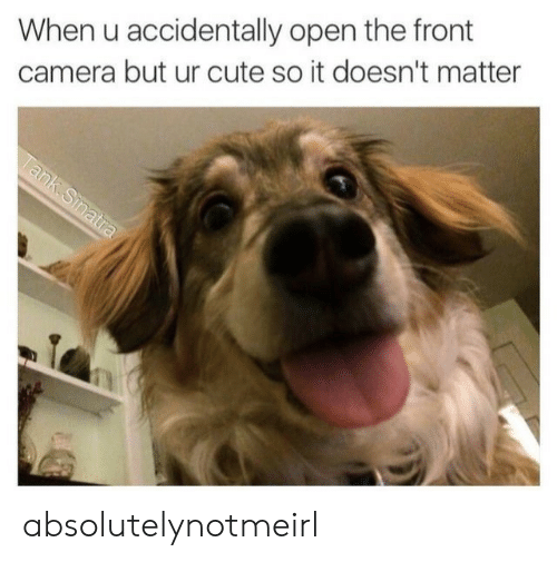 Cute, Camera, and Tank: When u accidentally open the front  camera but ur cute so it doesn't matter  Tank.Sinatra absolutelynotmeirl