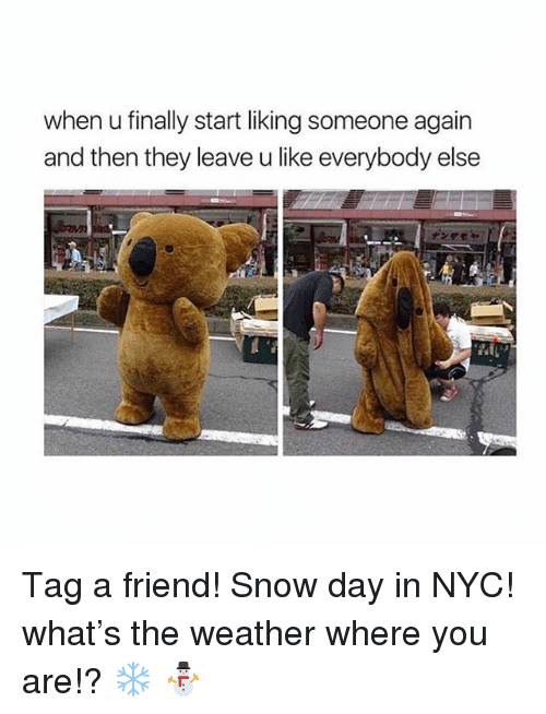 liking someone: when u finally start liking someone again  and then they leave u like everybody else Tag a friend! Snow day in NYC! what's the weather where you are!? ❄️ ⛄️