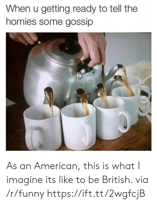 imagine it: When u getting ready to tell the  homies some gossip As an American, this is what I imagine its like to be British. via /r/funny https://ift.tt/2wgfcjB