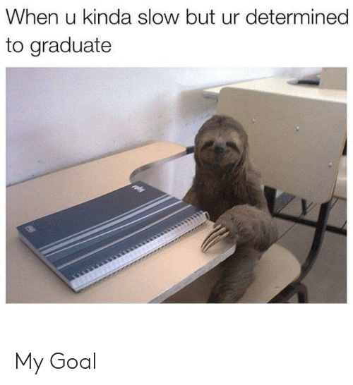 Goal, When U, and Slow: When u kinda slow but ur determined  to graduate My Goal