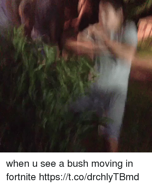 moving in: when u see a bush moving in fortnite  https://t.co/drchlyTBmd