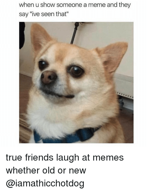 "Orly: when u show someone a meme and they  say ""ive seen that"" true friends laugh at memes whether old or new @iamathicchotdog"