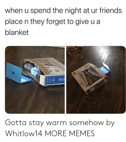 blanket: when u spend the night at ur friends  place n they forget to give u a  blanket  EDT  LEDTV Gotta stay warm somehow by Whitlow14 MORE MEMES