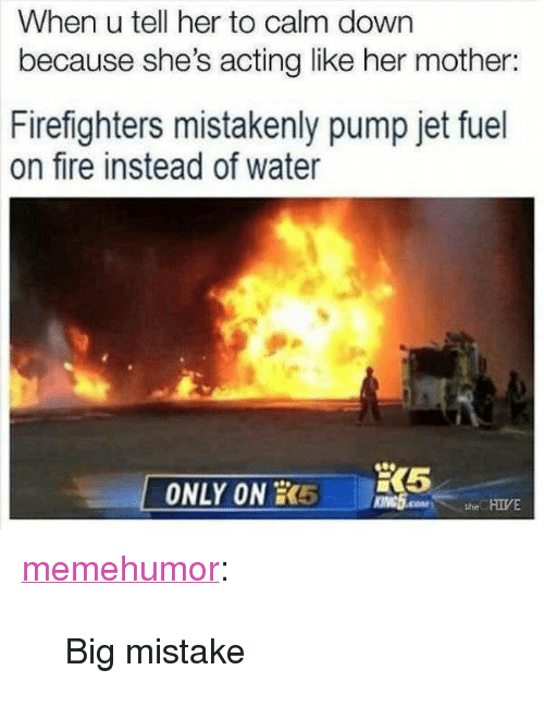 """mistakenly: When u tell her to calm down  because she's acting like her mother:  Firefighters mistakenly pump jet fuel  on fire instead of water  ONLY ON RR5  the HIIVE <p><a href=""""http://memehumor.net/post/168386269963/big-mistake"""" class=""""tumblr_blog"""">memehumor</a>:</p>  <blockquote><p>Big mistake</p></blockquote>"""