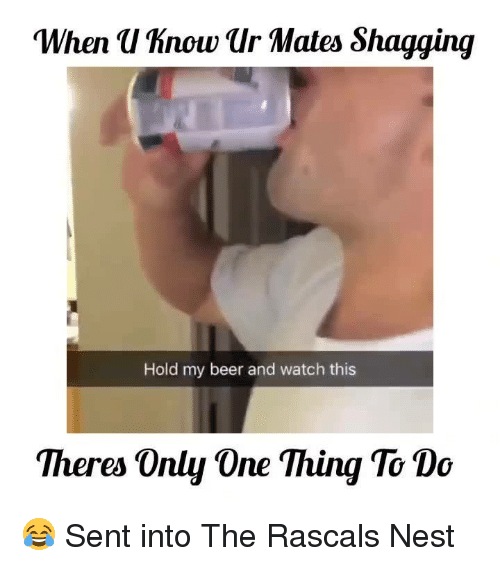 """Beer, Memes, and Nest: """"When uhnowur Mates Shagging  Hold my beer and watch this  Theres Only One Thing To Do 😂  Sent into The Rascals Nest"""
